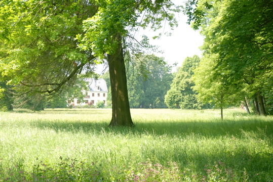 Parkansicht Schlosspark Knauthain