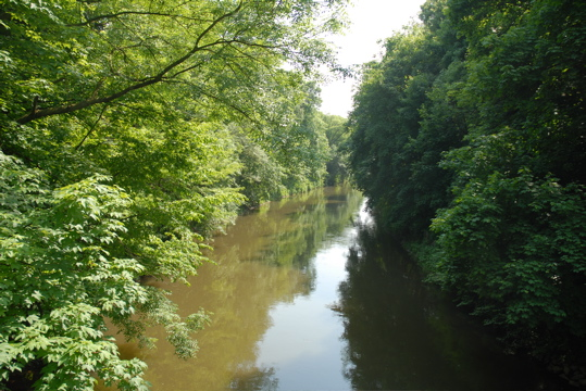 Blick auf Weiße Elster bei Leipzig Knauthain