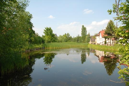 Dorfteich in Leipzig Knauthain